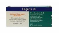 Энджерикс-В 1 мл 20 мкг N10 вакцина против гепатита В